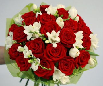 red roses with freesias  (40 stems)