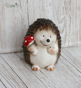 Hedgehog with mushroom