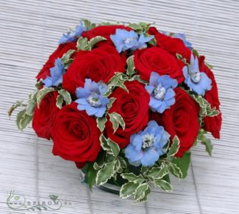 15 red roses in a glass cube with delphinium