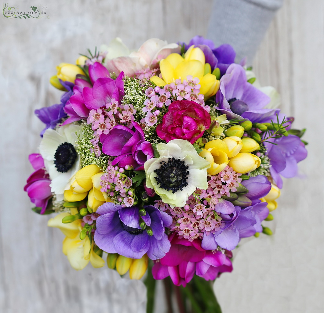 Bridal bouquet with colorful freesias, anemones, waxflowers