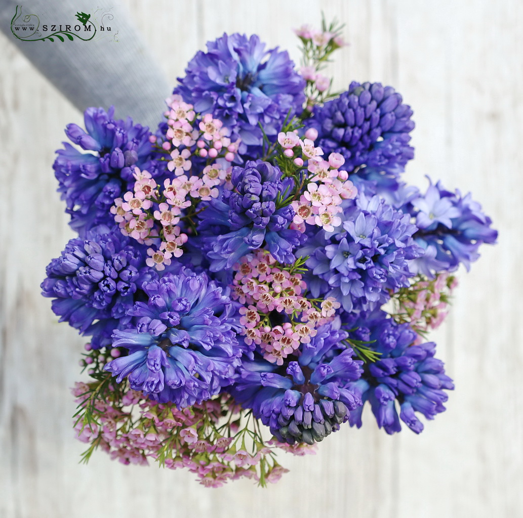 Bridal bouquet with blue hyacinths and waxflowers