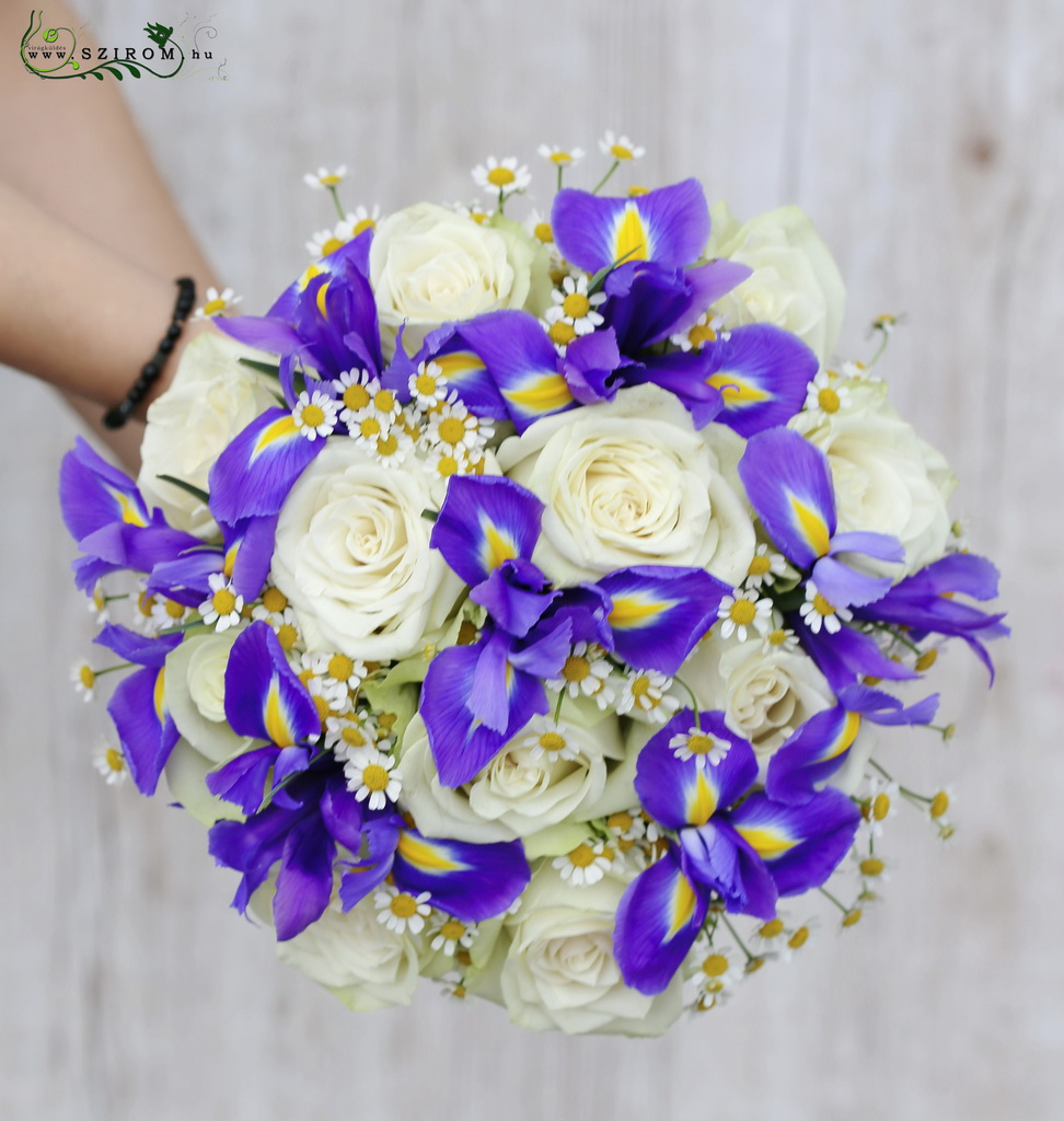 Bridal bouquet with white roses and purple irisses, and chamomilles
