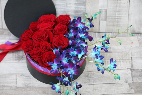 red rose box with blue dendrobium orchids (19 + 5 stems) - virágküldés