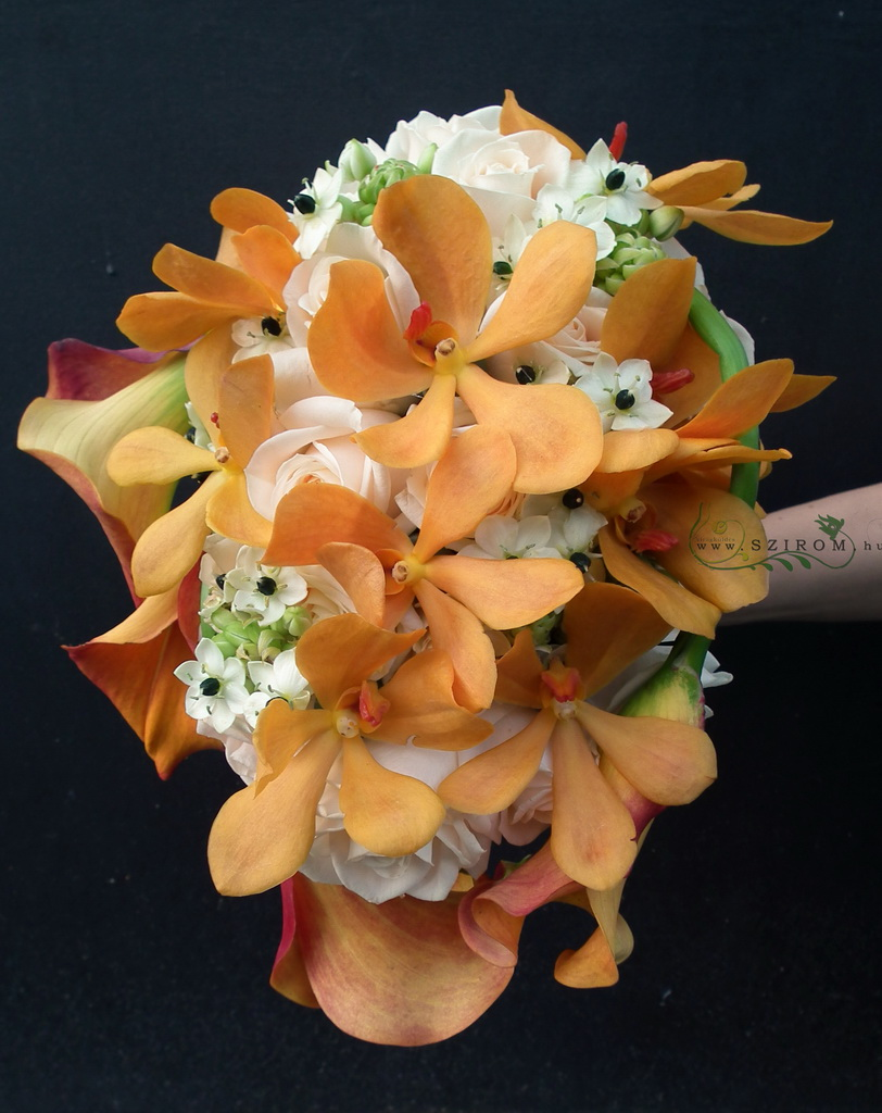 Bridal teardrop bouquet of roses and orange mokara orchids (ornithogalum, white)