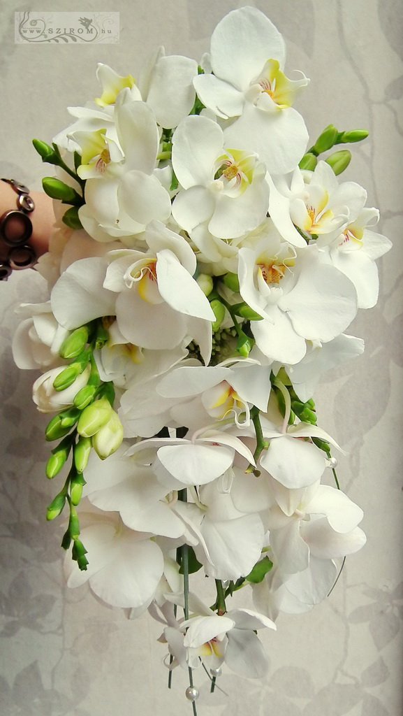Bridal teardrop bouquet with orchids and freesias (white)