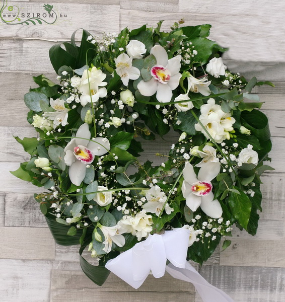 Small ivy wreath with white flowers (37 cm 11 stems) - virágküldés
