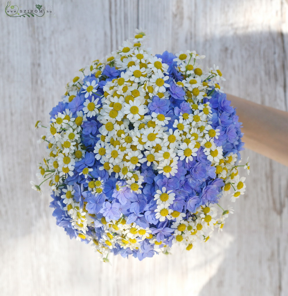 bridal bouquet (hortensia,chamomile, blue, white)
