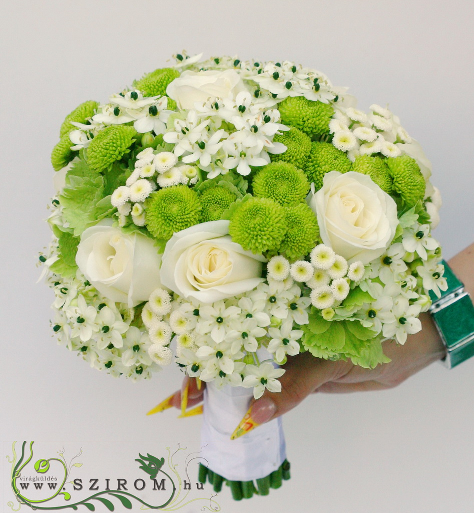bridal bouquet (rose, matricaria, button, ornithogalum, green, white)