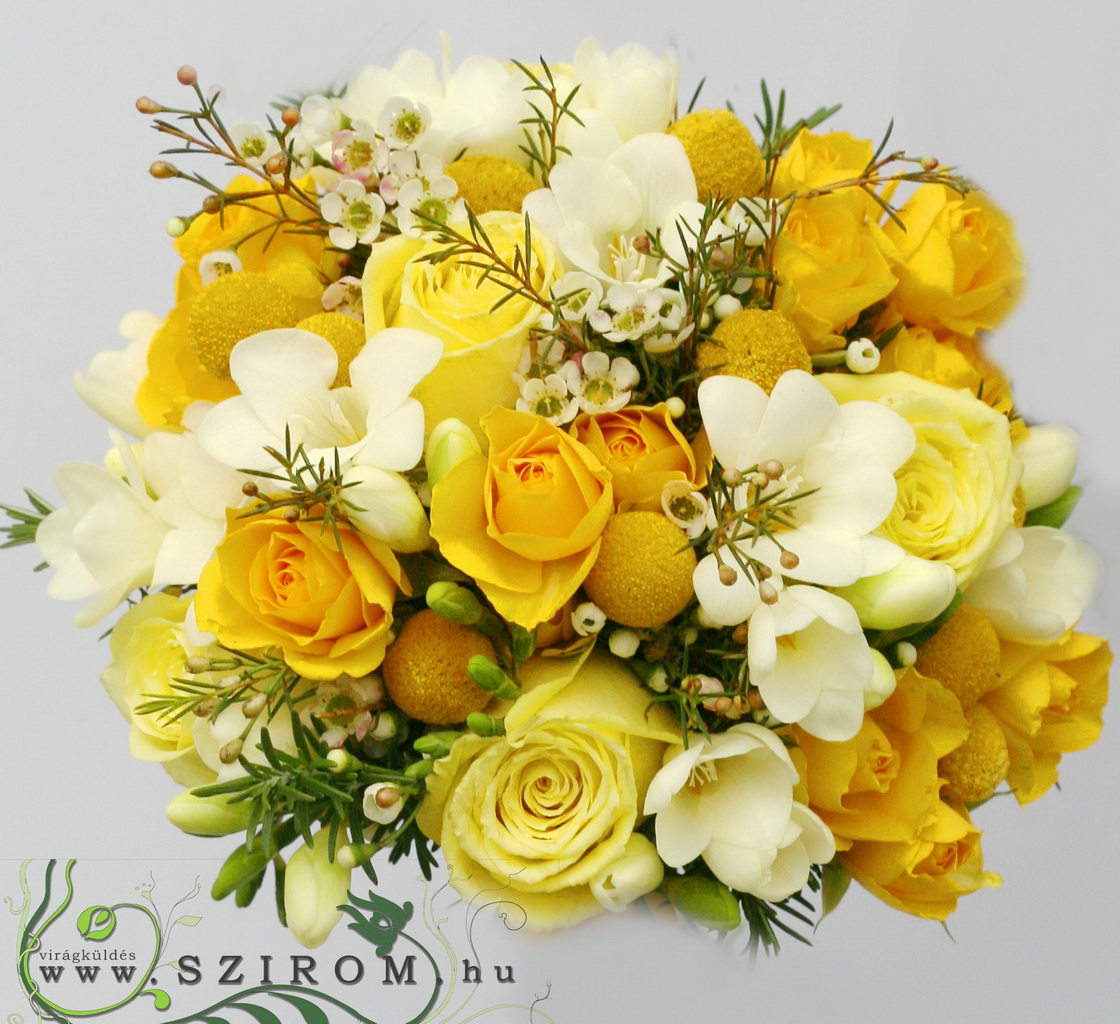 bridal bouquet (rose, wax, craspedia, freesia, yellow, white)