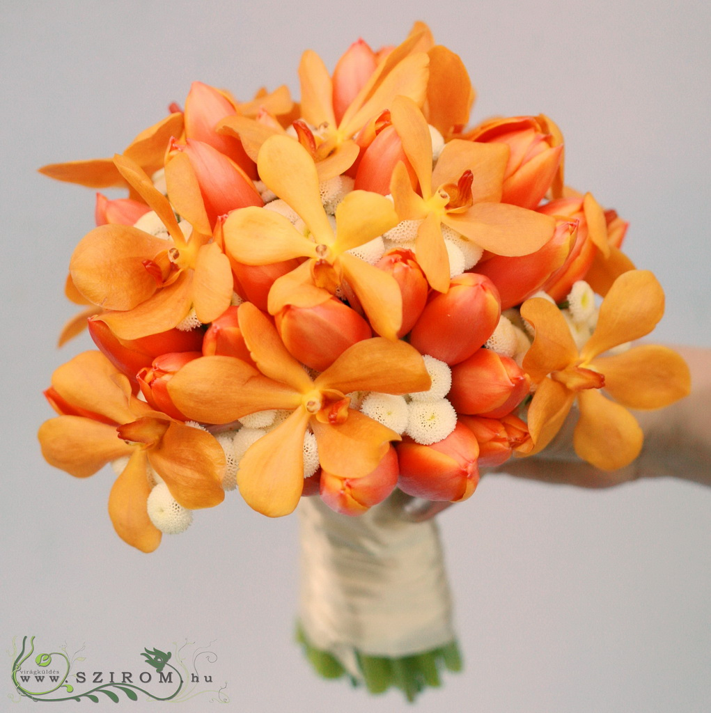 bridal bouquet (tulip, matricaria, mokara, orange, white)